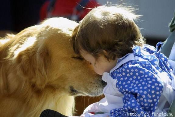 enfant_chien