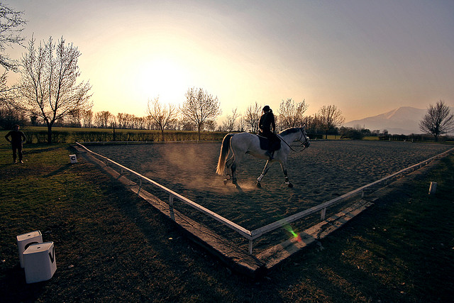 Dressage au crépuscule./ Photo   Edoardo Costa