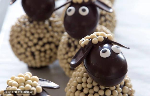 Les moutons de Juliette et Chocolat./ Photo Juliette et Chocolat