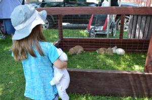 Les jolis lapins./ Photo DR Lexie Swing