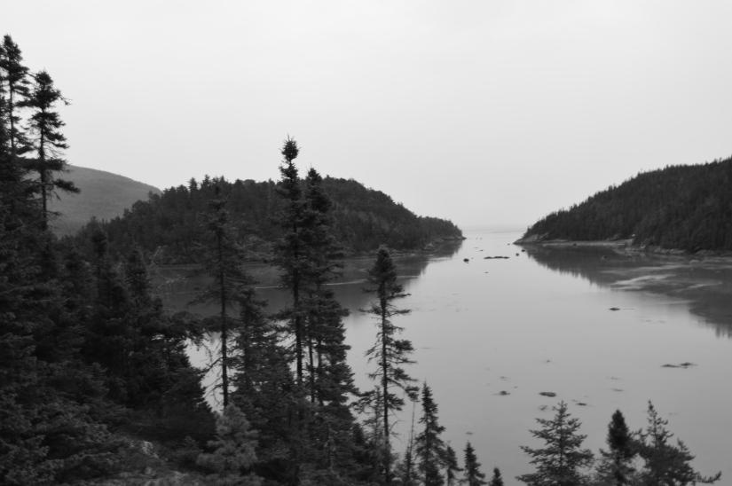 Baie des rochers./ Photo Dr Lexie Swing