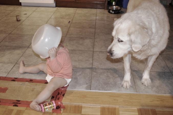 chien et enfant
